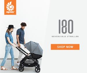 Ergo Baby Reversible Stroller