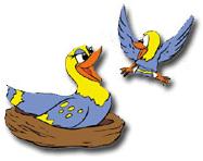 duck6-feb2015