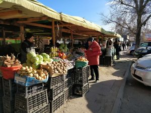 Fruit-market stop in Mongolia