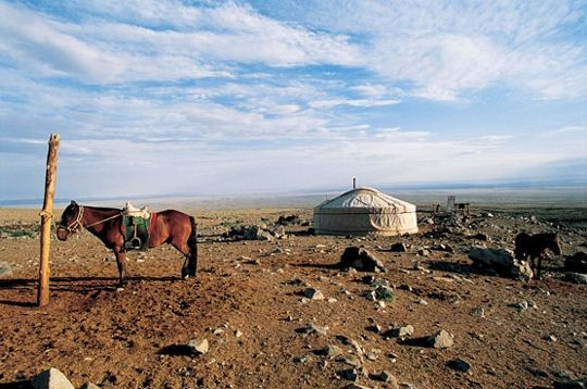 A horse stands in front of a nomad's ger (yurt) in the Gobi Desert.