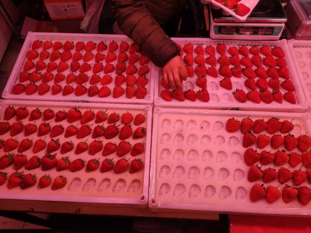 Dandong Strawberries