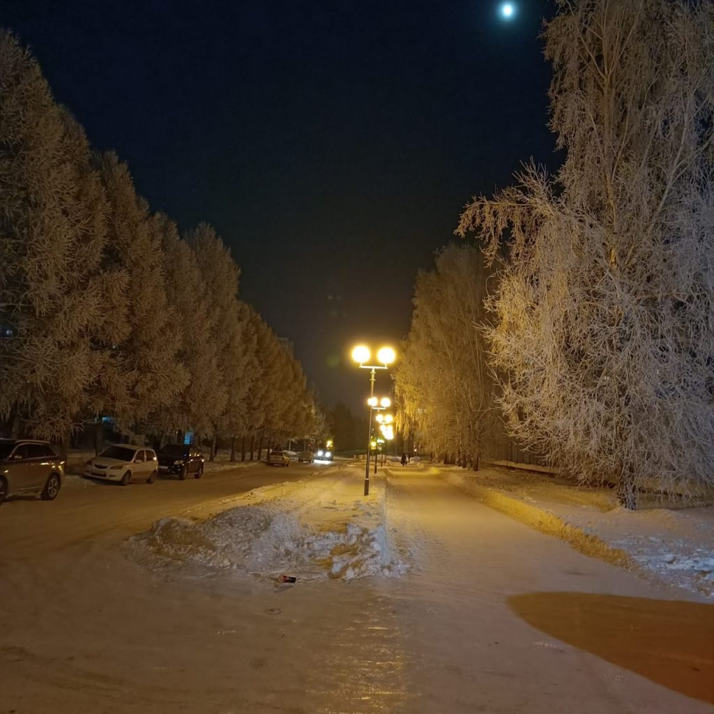 Siberian Winter at night