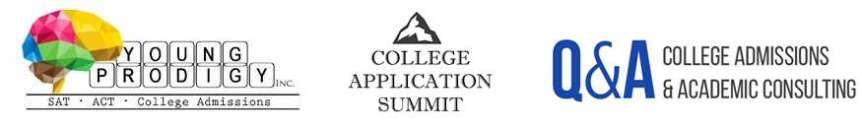 Summit Banner Logo