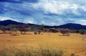 69 Turkana 300x196 100 Things to do in Kenya
