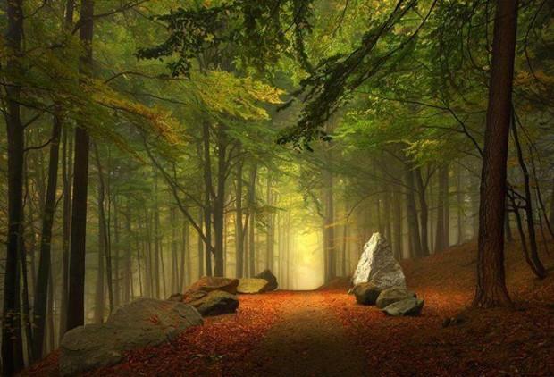 Ireland Fall Wallpaper 12 Wonderful Photos Of Enchanted Nature