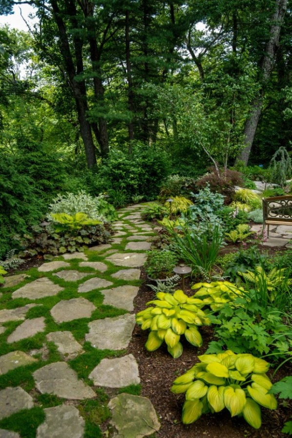 amazing landscaping ideas small