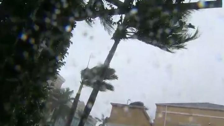 hurricane_naples_1505072463100.jpg