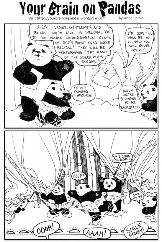 sugar plum pandas