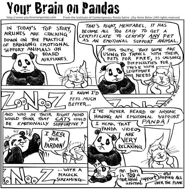 Image of: Meme Im Sure Mr Bun Is Emotionally Supportive Pinterest Emotional Support Animals Archives The Panda Chronicles