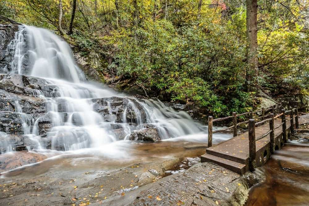 It provides access to hen wallow falls and a network of trails that lead through deep coves, high ridges and remote old growth forests. 6 Of The Best Smoky Mountain Trails For An Easy Hike