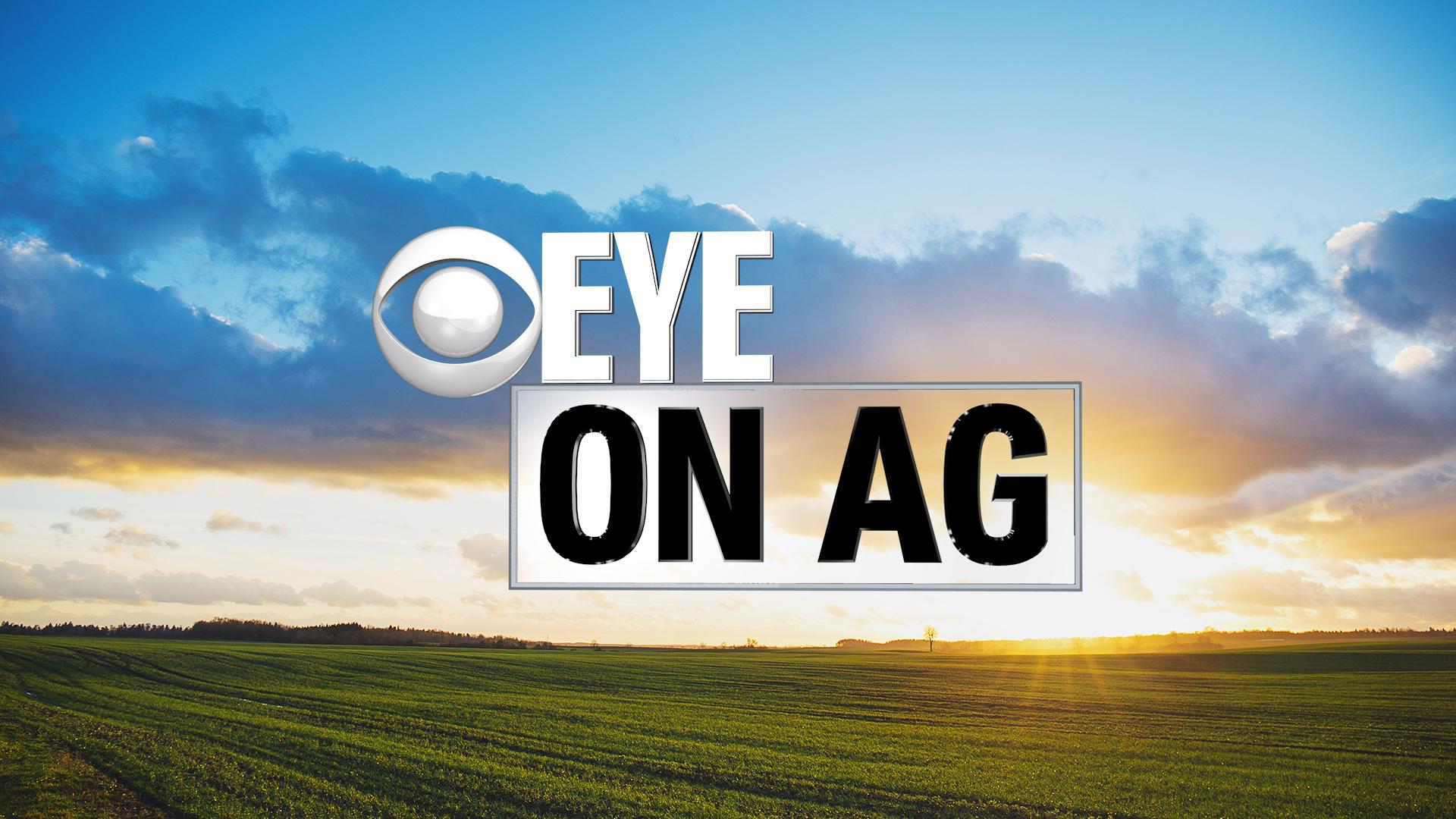 eye-on-ag_1521674200135.jpg