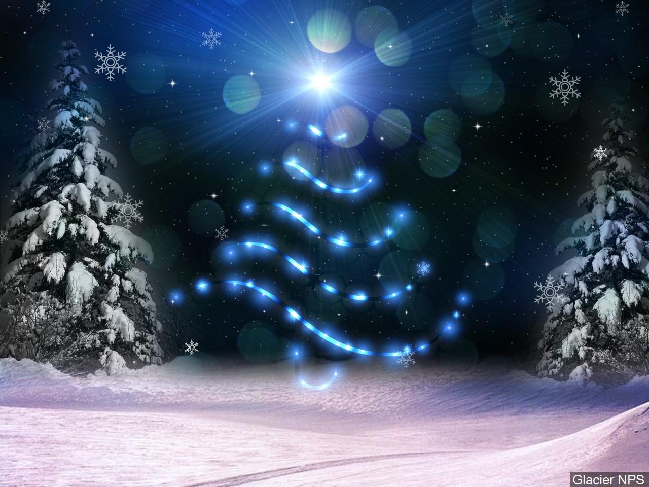 Christmas Tree_1543294862332.jpg.jpg