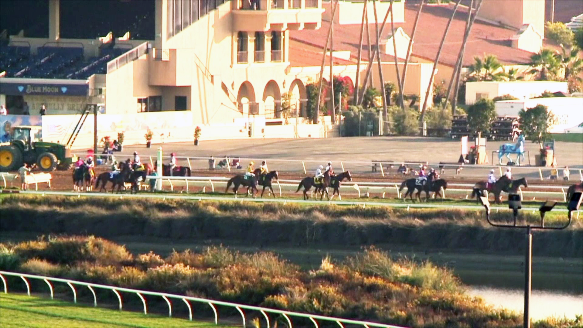 Horse Euthanized After Training Breakdown At Del Mar