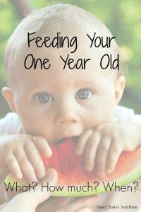 Feeding Your One Year Old: What? How Much? When?