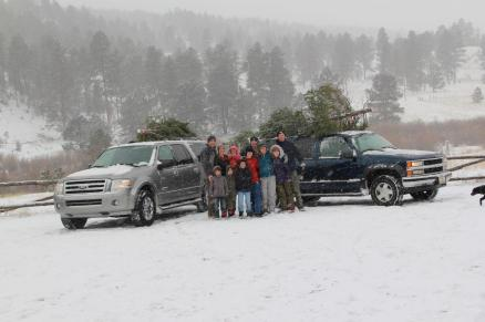 Christmas tree permits cutting colorado - woodland park