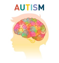 autism diagram [ 880 x 913 Pixel ]