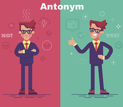 Examples Of Antonyms Synonyms And Homonyms