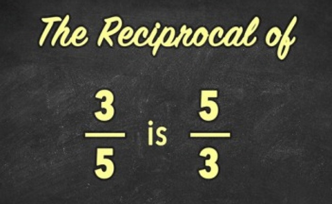 Reciprocal Dictionary Definition Reciprocal Defined