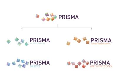 PRISMA CURSUS