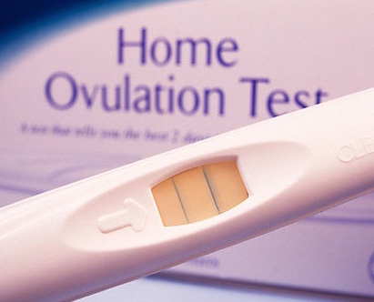 Are Ovulation Predictor Kits Reliable?