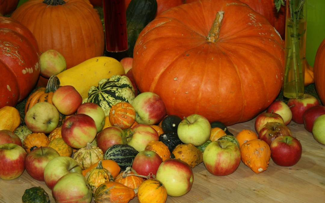 Fertile Foods For Your Thanksgiving Table: Download Your Fertile Thanksgiving Dinner Menu!