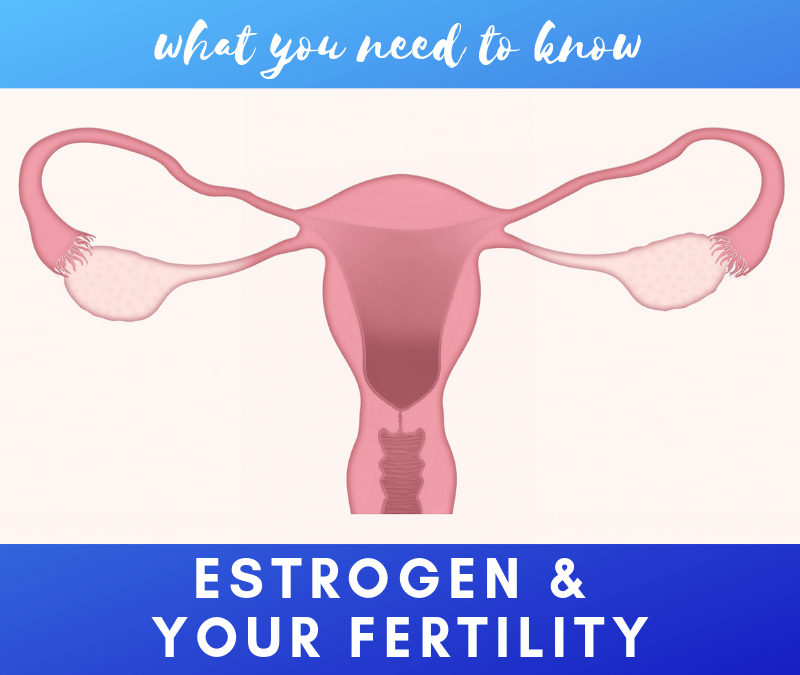 Estrogen & Your Fertility: What You Need to Know