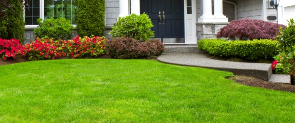 lawn care in lithia fl