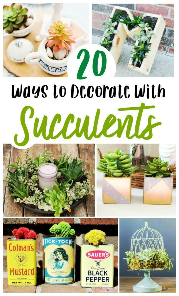 If you're looking for some fun and unique ways to decorate with succulent house plants, look no further than these great options! Super simple and easy to DIY, you'll love all these home decor projects that you can do with ease! #succulent #DIY #homedecor