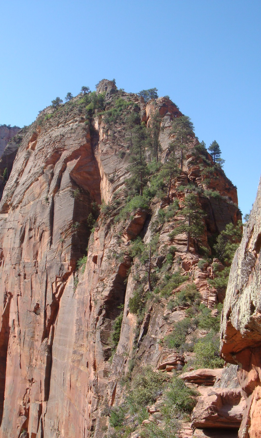 Angels Landing Your Hike Guide