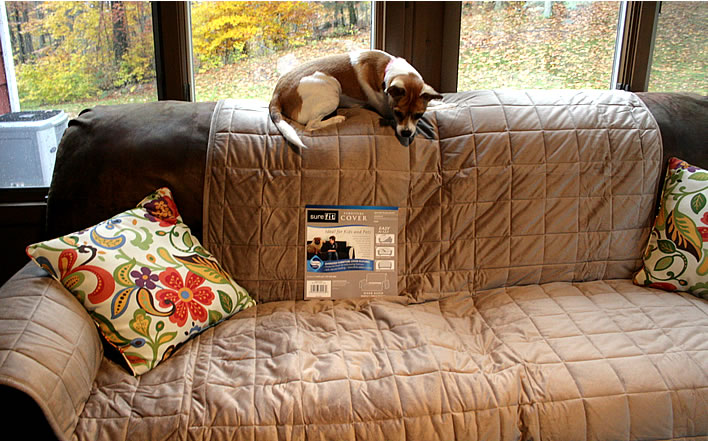 How I Puppy Playdate Tested A SureFIT Sofa Cover
