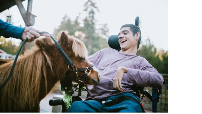Man in wheelchair for hippotherapy session