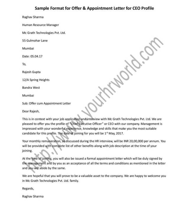 Offer Appointment Letter Format For
