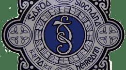 The Garda Síochána