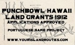 Punchbowl Land Grants Approved 1912:  List of Portuguese Names