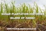 Sugar Plantation Histories:  Island of Hawaii