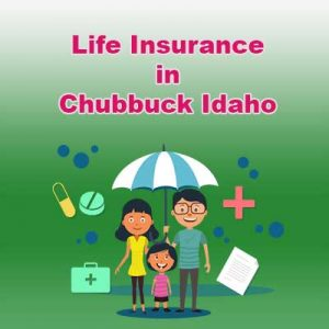 Affordable Life Insurance Quotes Chubbuck  Idaho