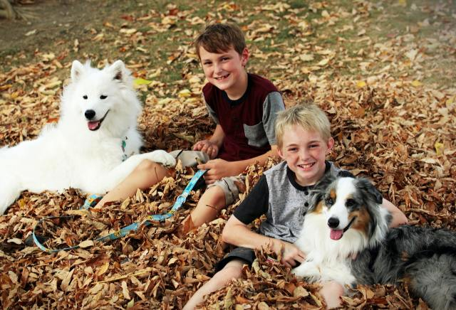 Dogs are good playmates for kids and adults alike.