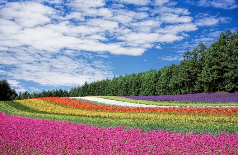 Most beautiful places to travel in spring