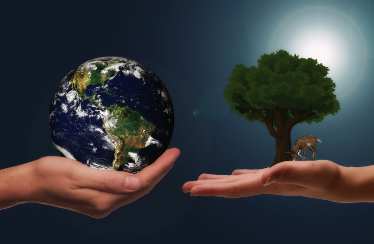 Simple Ways That You Can Do To Help Save the Planet