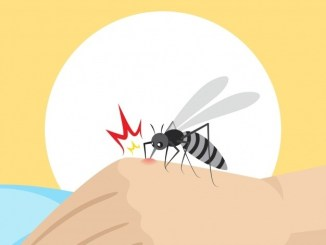 Top 5 Dengue After Tips