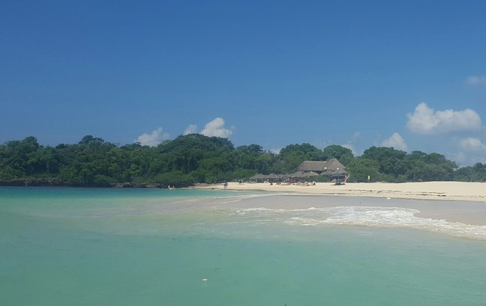 Best Beaches Near Dar es Salaam