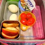 Lunch Ideas For Kids That Don't Include a Sandwich