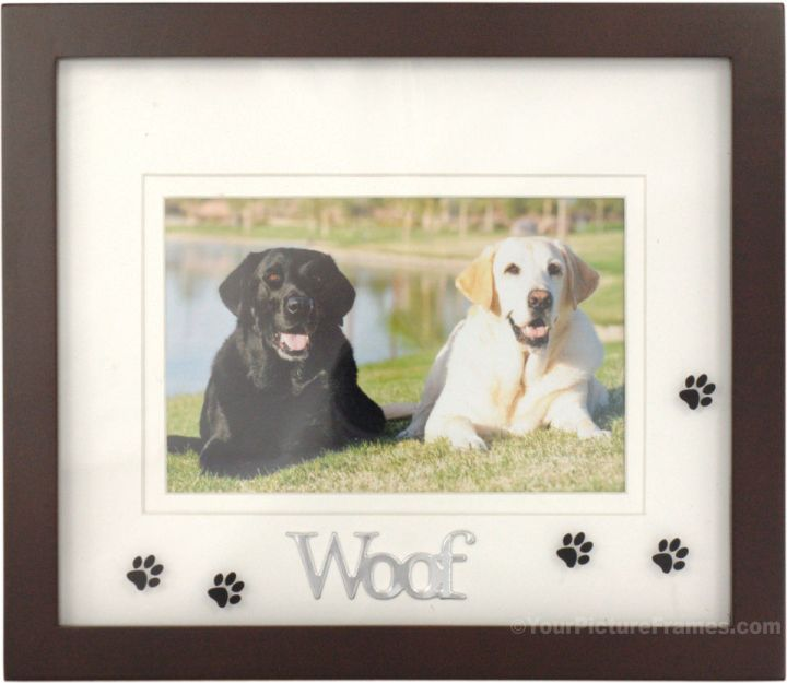 photo frames for dogs | Frameswall.co