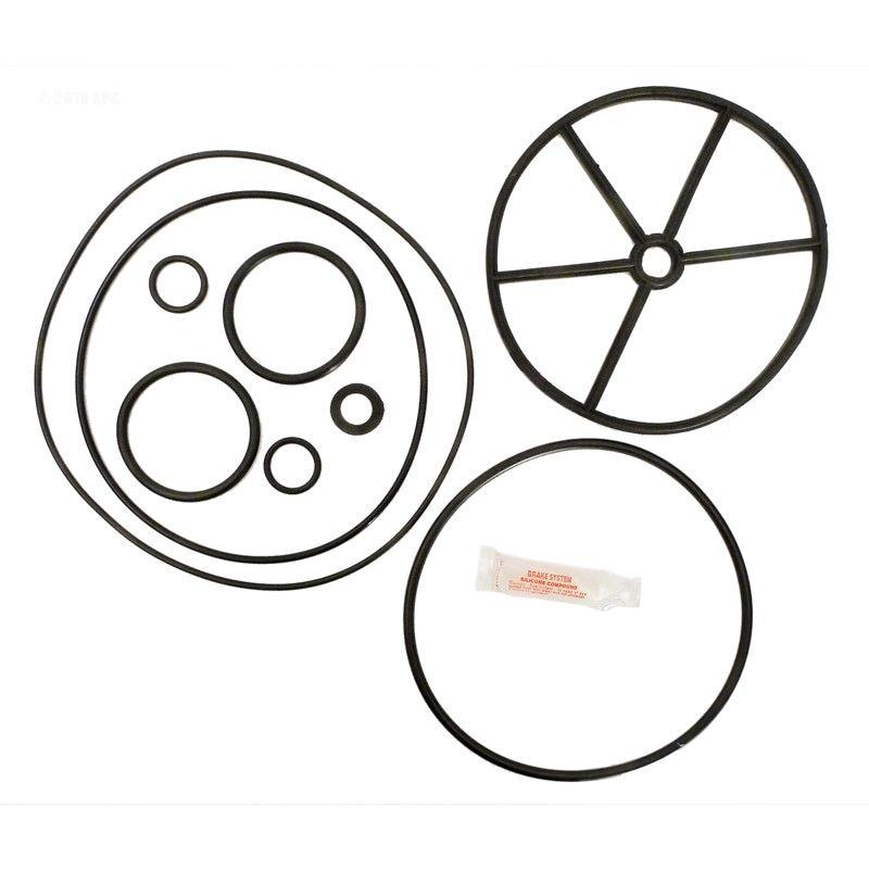 Pentair 261055 Multiport Valve Repair Kits on Sale at