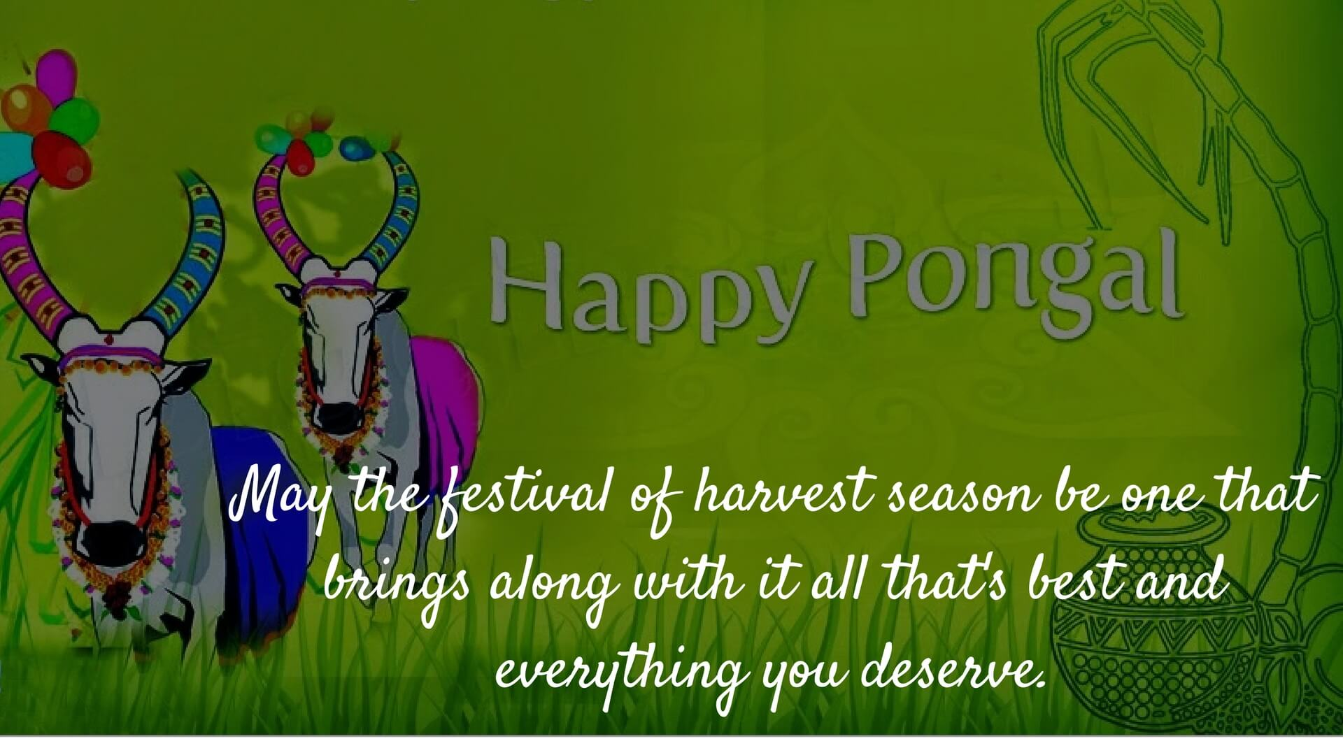 Happy pongal festival wishes 2018 messages greetings images happy pongal wishes images kristyandbryce Images