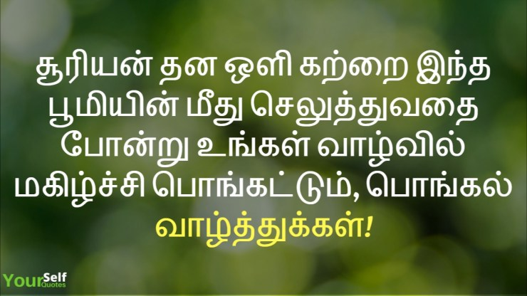 Pongal Wishes Tamil Images