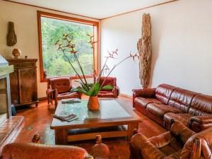 livingroom leather brown