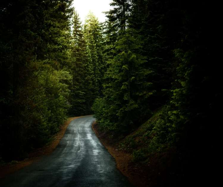 country_roads2