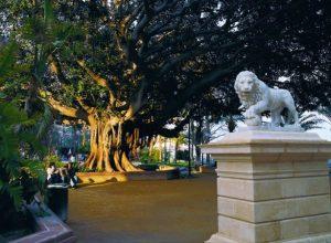 canalejas park Alicante