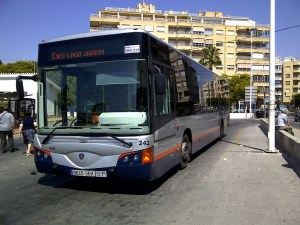 Torrevieja Bus lines